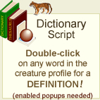dictionary script graphic